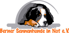 Berner Sennenhunde in Not